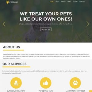 petcare-website-designing-in-bangalore