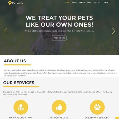 Pet Care Website Designing in Bangalore