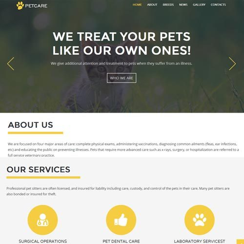 Pet Care Website Designing in Bangalore